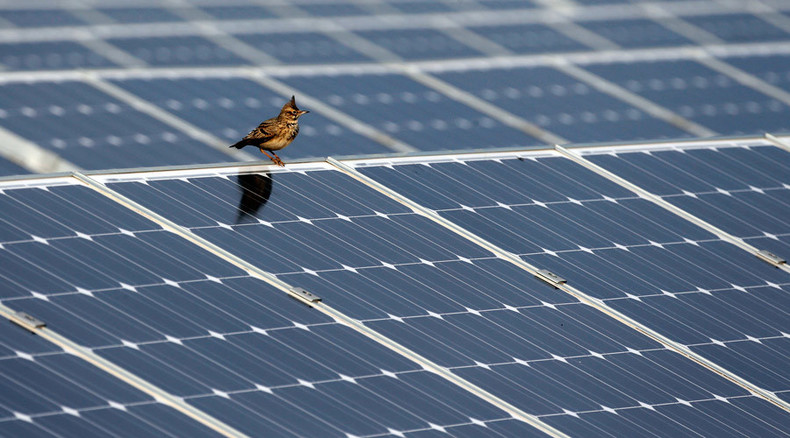 Chinese firm to build solar power plant in Russia