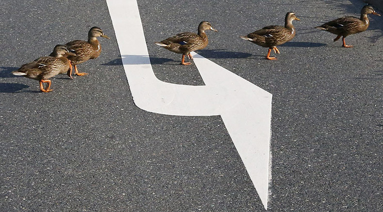 BRICS bank gets its ducks in a row