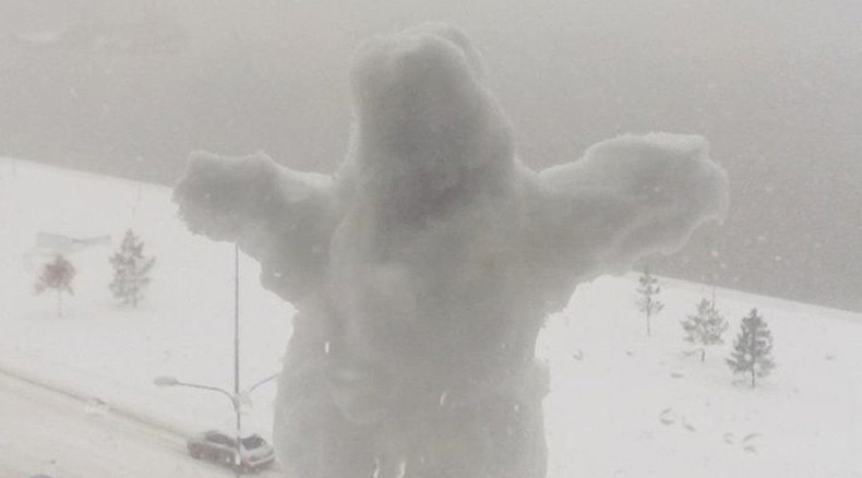 Too much even for Siberia: Worst blizzard in 10yrs turns Omsk into huge snowball (PHOTOS)