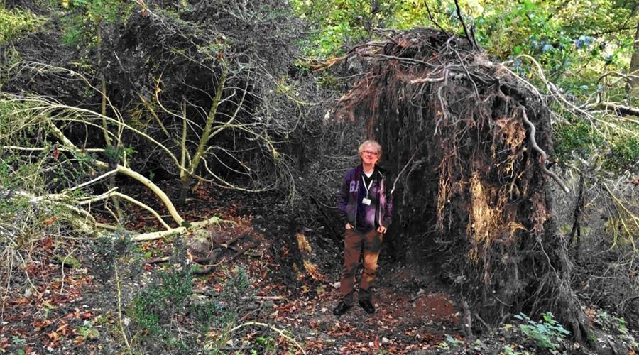 Ancient 6,300yo 'eco house' found near legendary Stonehenge monument in UK