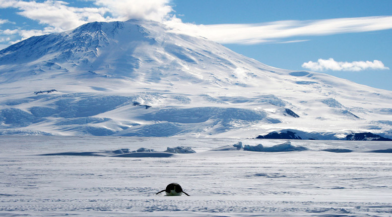 Antarctica gaining more ice than losing – NASA