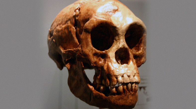Ancient 'hobbit' people evolved from larger species, shrank in the process – study