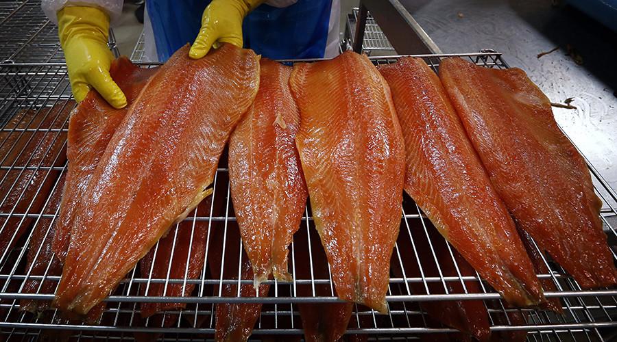 'Frankenfish:' GMO salmon declared safe to eat, environmentalists rail against FDA