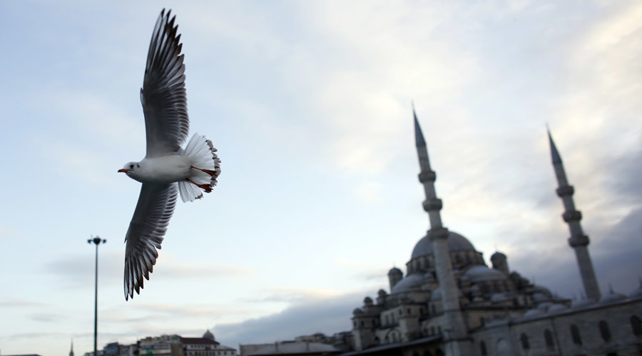 Turkey: jet incident won't affect energy ties with Russia