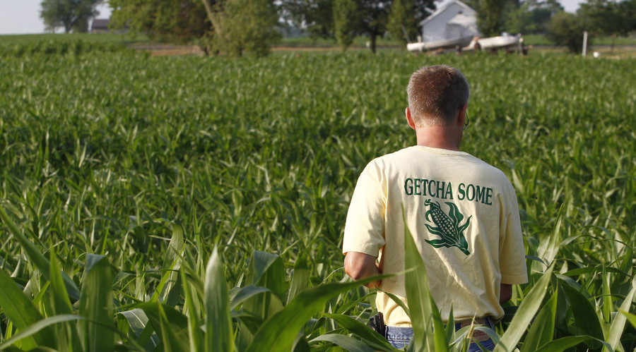 Food fight: Indiana farmers sue seed company over millions in losses