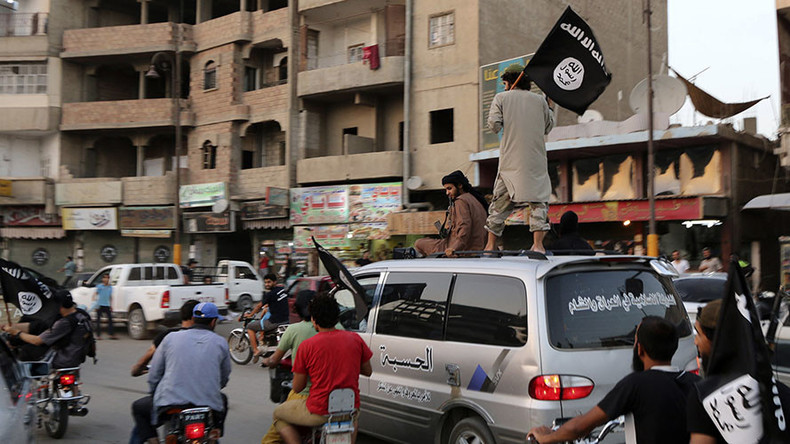 Islamic State's leaked nation-building plans show 'only Sunni forces' can beat them - general