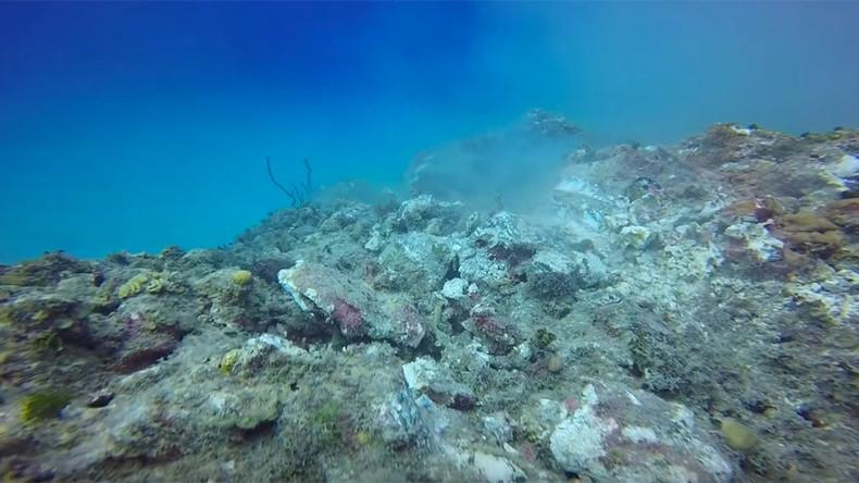 Cruise ship anchor grinds through Cayman Island reef (VIDEO)