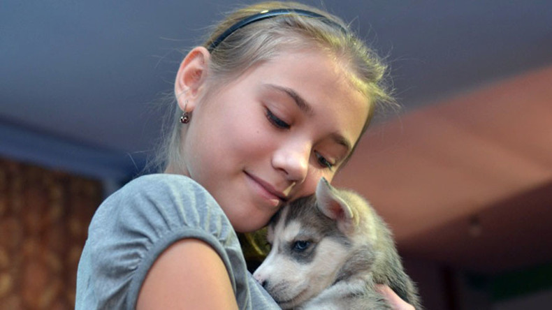 Holiday spirit: 12yo girl asks Putin for husky puppy for New Year…and gets it!