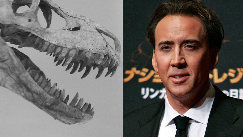 Stolen: Nicolas Cage to return $276k dino skull to Mongolia
