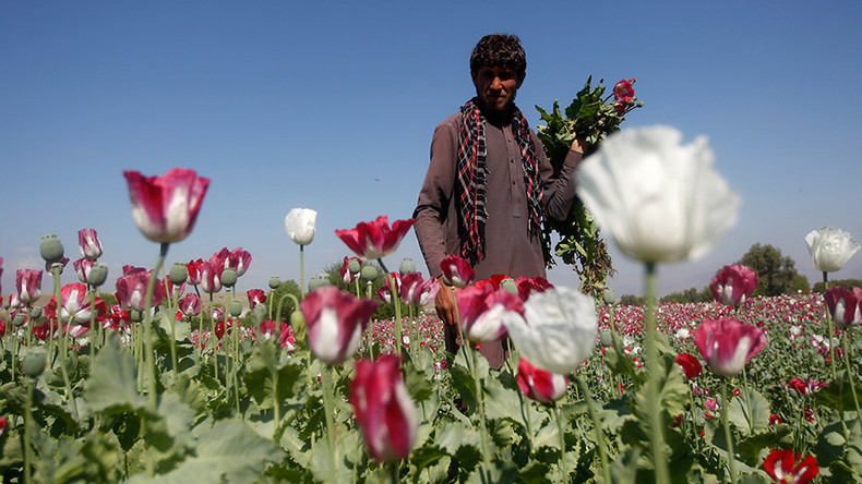 'Turkey's porous border lets ISIS & Taliban profit from heroin trade'