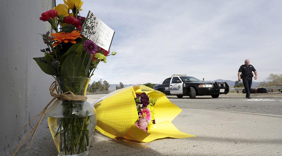 San Bernardino shooter Tashfeen Malik pledged allegiance to ISIS, passed DHS screening - reports