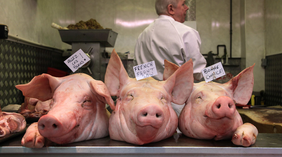 Pig heads dumped outside Muslim school in Lancashire treated as hate crime