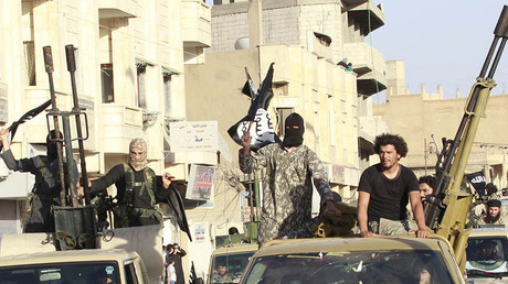 Armed to the teeth: Amnesty slams US & allies for weapons falling into ISIS' hands