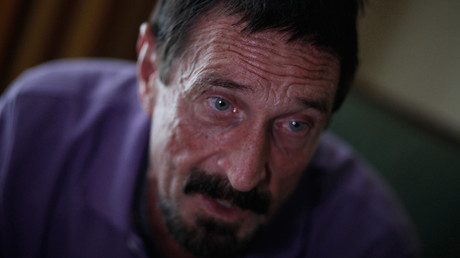 'More devastating than any nuclear war': John McAfee on the coming cyber war with ISIS