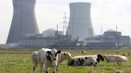 Doel nuclear plant © Francois Lenoir