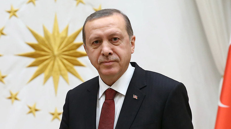 Erdogan cites Hitler's Germany as example of effective presidential system