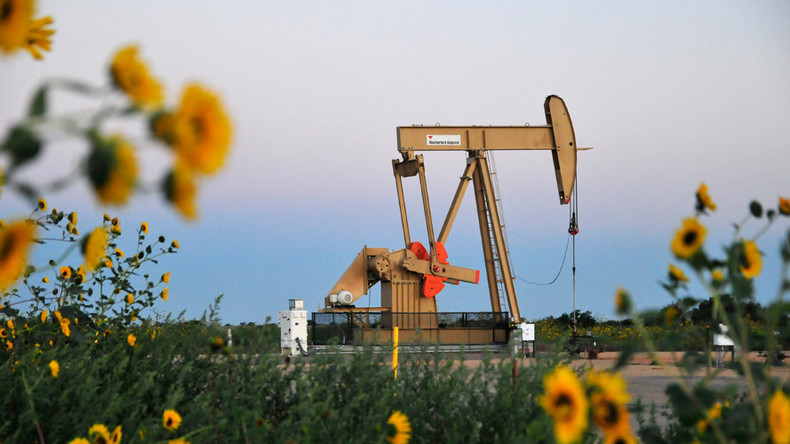 Top energy lobbyist bashes Obama regulations as oil production spikes in 'American renaissance'