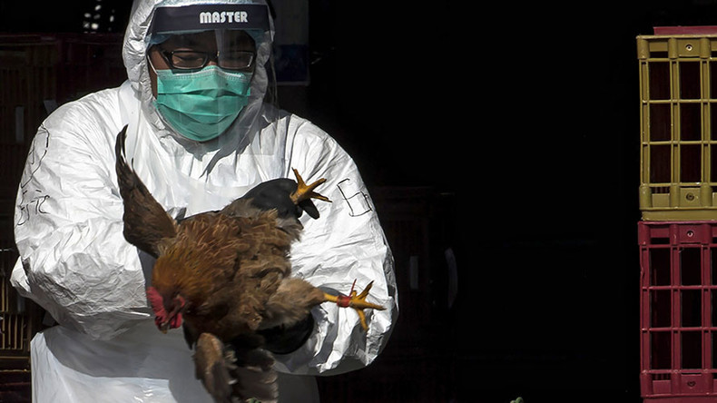 Bird flu death puts Hong Kong border checkpoints on disease lookout