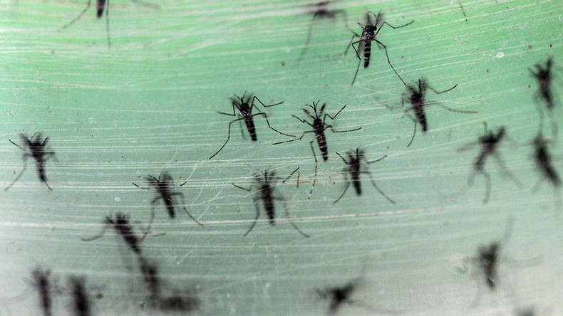 Zika virus: What you need to know about the latest global health scare