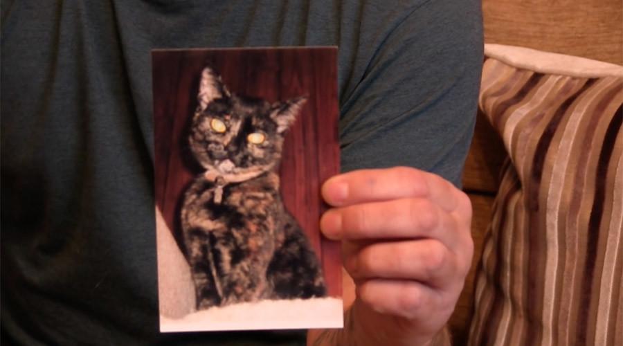 PETA up bounty to nab 'twisted' Cat Ripper of Croydon