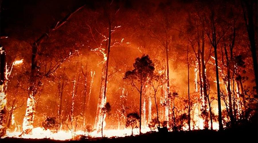 2 dead as wild bushfires rage through Australia (PHOTOS)