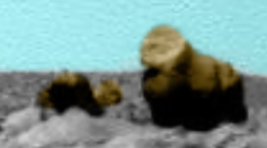 Mars: 'Alien bear and cub' identified in latest red planet 'discovery' (VIDEO)
