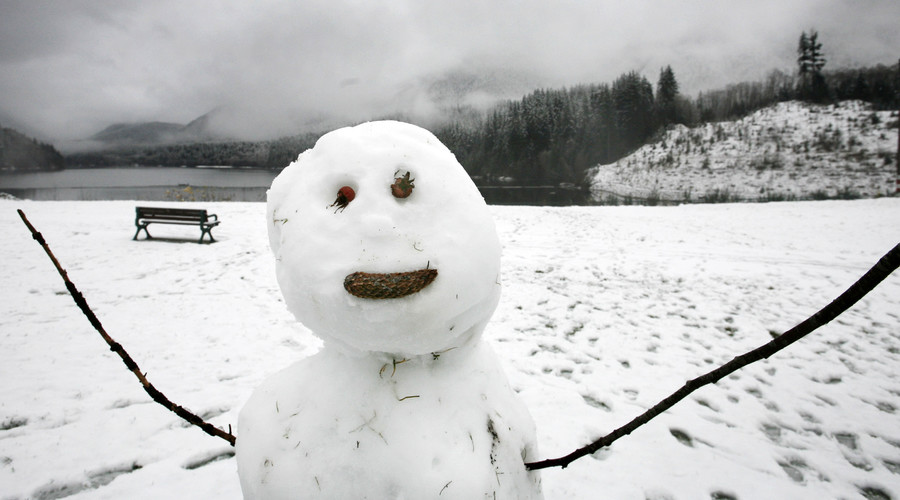 'Giant snow penis' becomes nuisance for Swedish park staff