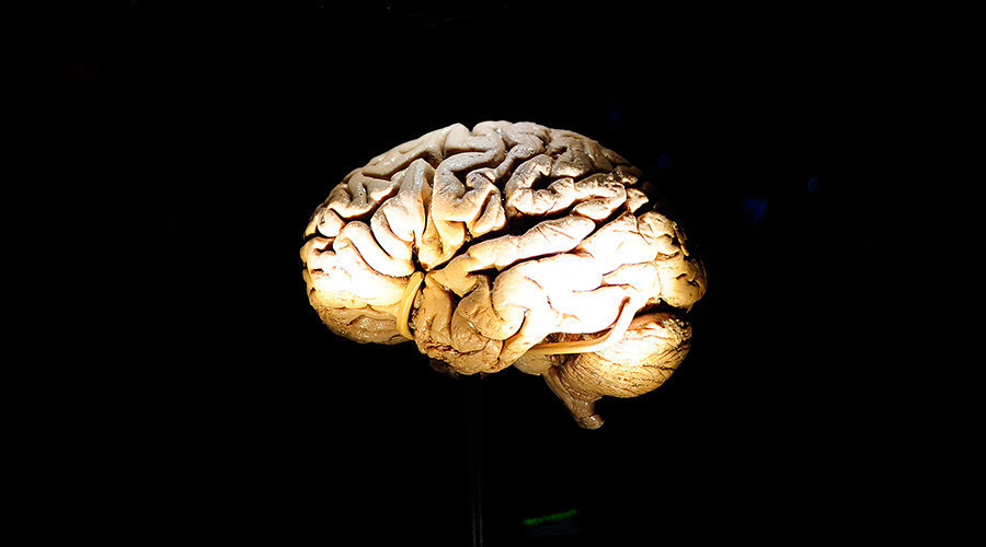 'Bombshell discovery': Human brain can hold 10 times more memories than previously thought – study