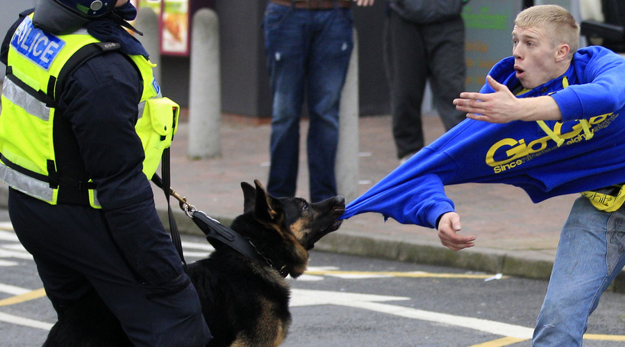 Gun dogs wanted: English cops sniff out canine crime-fighters