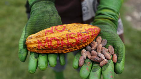 Monsanto, US, & Gates Foundation pressure Kenya to reverse GMO ban