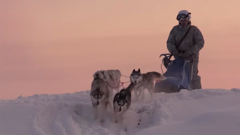 Russian Arctic troops train with huskies and reindeer (VIDEO)