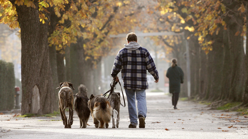 DNA-ing dog poo: Spanish city to create database of dog owners falling 'foul' of the law