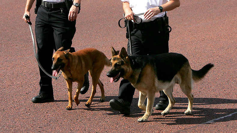 An arm & a leg? Body parts should be used to train police dogs, say academics