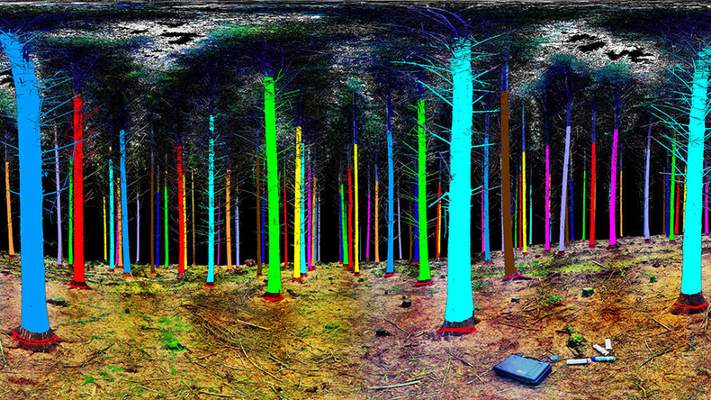 Future forestry: 3D space technology aims to cut down on logging