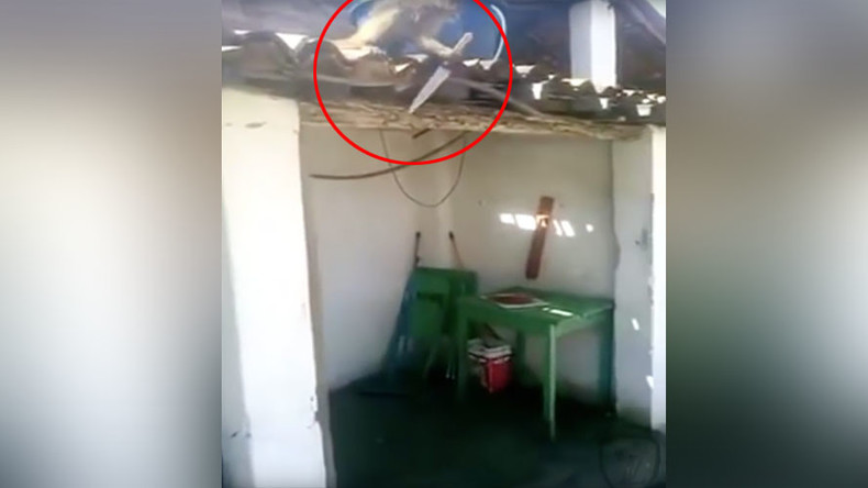 'I think you've had enough': Knife-wielding drunk monkey terrorizes Brazilian bar (VIDEO)