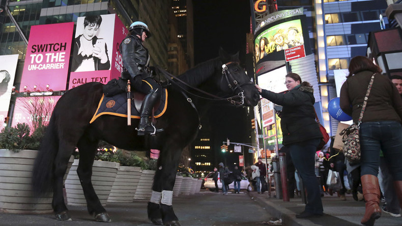 New York night-mare: Cooked horse head found in city park