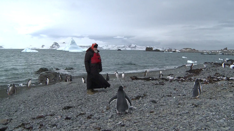 Patriarch Kirill strolls among penguins, prays in Orthodox church in Antarctica (VIDEO)