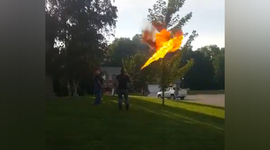 Stirring up an actual hornet's nest: Flamethrower used for pesky pests (VIDEO)