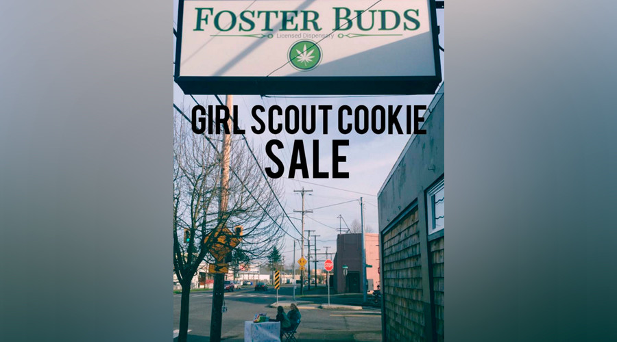 Tough cookies: Girl Scouts defeat gun-wielding gang in botched robbery