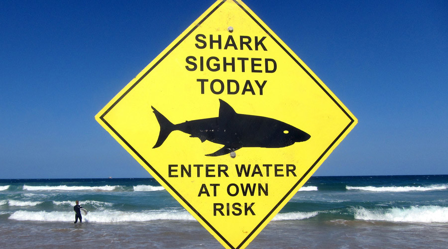 Stalking Jaws: $250k drones to safeguard Aussie swimmers from sharks (PHOTO)