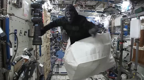 Going bananas? Space ape crashes ISS as crew pulls off prank (VIDEO)