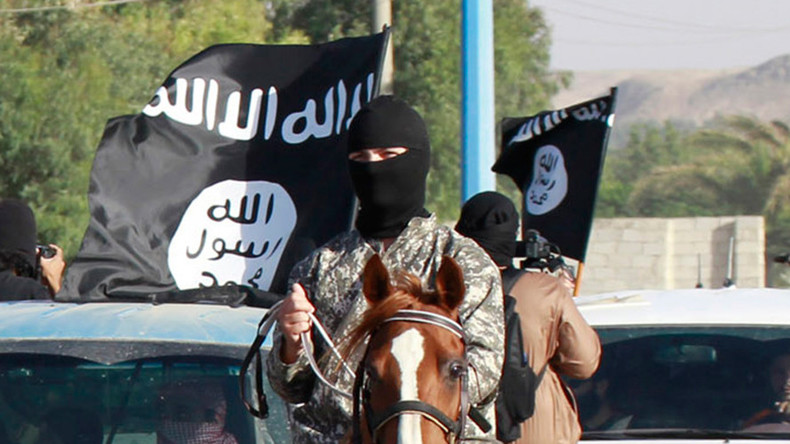 EXCLUSIVE: First Western journalist to visit ISIS says US wants to 'divide' Syria