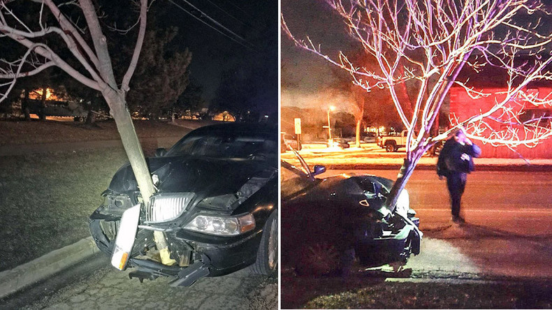 All up in my grill: Tree stuck in moving car alerts police to alleged drunk driver (VIDEO)