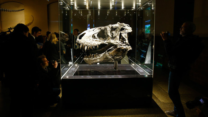 Pregnant T. rex may contain dinosaur DNA, an impossible find