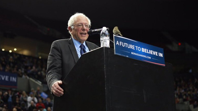 #BirdieSanders: Crowd goes wild when 'dove in disguise' joins Sanders on podium (VIDEO)