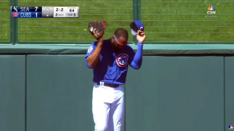 Chicago Cubs outfielder Jason Heyward attacked by bees during spring training (VIDEO)