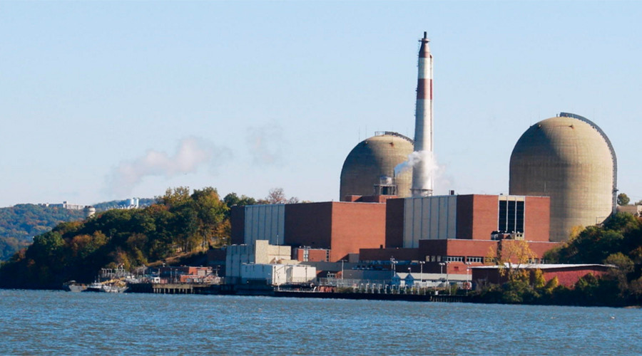 Bird poop blamed for Indian Point nuclear reactor shutdown