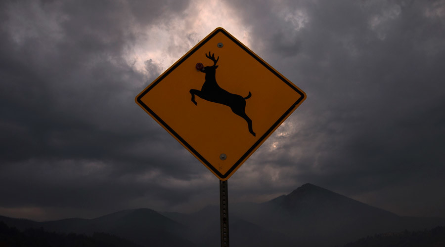'Suicidal deer' road sign kicks up a ruckus in Iowa