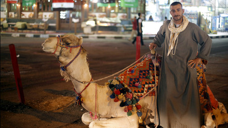 Tourism ban cost Egyptian economy $1.3bn
