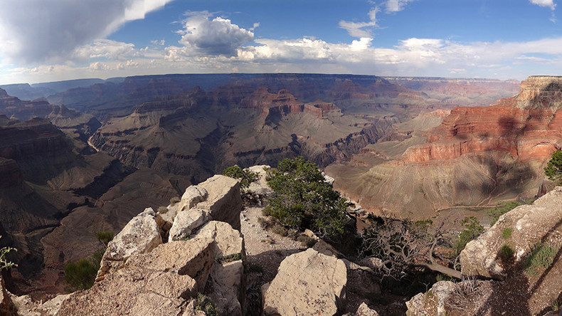 Billionaire Koch brothers allegedly fund pro-uranium mining plans in Grand Canyon – report